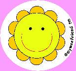Aurinko - Hauskat pottatarvikkeet - 89091 - 1
