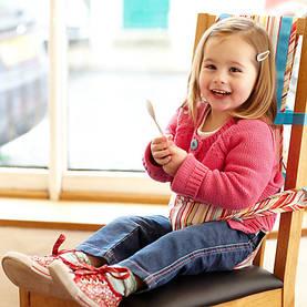 Grobag Chair Harness matkasyöttötuoli - Matkasyöttötuolit - 5055192053643 - 1
